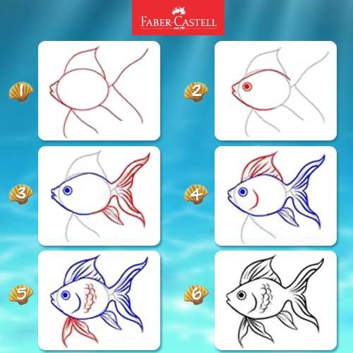 Step by step draw a fish