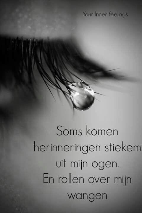 Tranen van herinneringen...iedereen heb daar wel eens last van...en naarmate jezelf ouder word nog veel meer...L.Loe