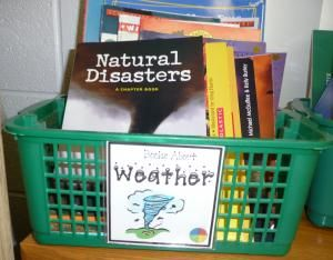 Classroom library basket labels - tons of downloadable labels for class library