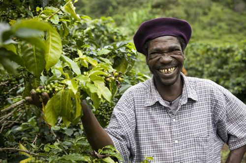 coffee farmer.....this is where it all begins! ♥