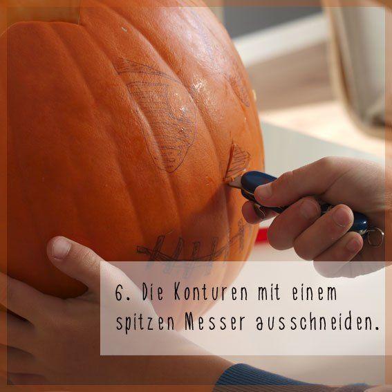 kuerbis_saege