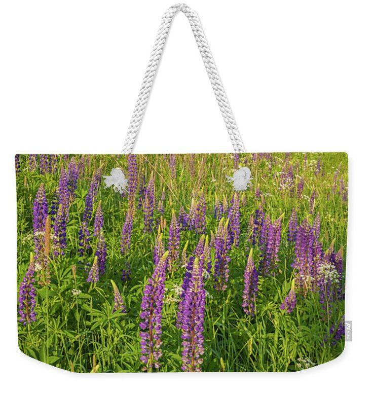 #AnnaMatveeva #Purple #Flowers # Lupines #ToteBags #FineArtAmerica #FineArtPrints #ForSale #Artdecor #Decor #Homedecor #Nature http://anna-matveeva.pixels.com
