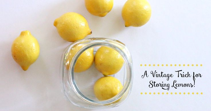 This simple trick for storing lemons will blow your mindhole! It is so simple and keeps your citrus fresh for up to a month in the fridge without drying out!