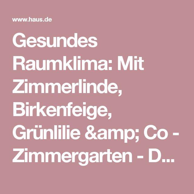 Gesundes Raumklima: Mit Zimmerlinde, Birkenfeige, Grünlilie & Co - Zimmergarten - DAS HAUS
