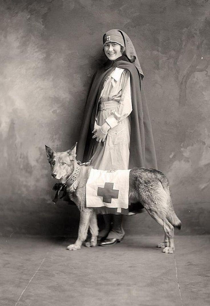 Red Cross Nurse with Rescue Dog... World War (1914-1918)