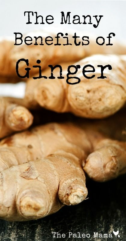 The Many Benefits of Ginger | A Cure for Asthma, Inflammation, Nausea, Motion Sickness, Diabetes, and Immunity | www.thepaleomama.com