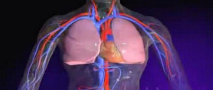 L'embolie pulmonaire