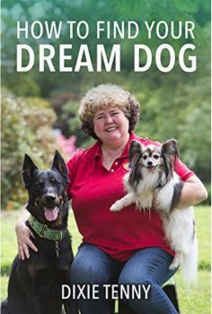 How To Find Your Dream Dog