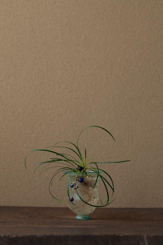 2012年3月17日(土) 「蛇の髯」とも呼びます。茂みに対する恐怖心でしょうか。 花=龍の髯(リュウノヒゲ) 器=ローマングラス碗(ローマ時代)
