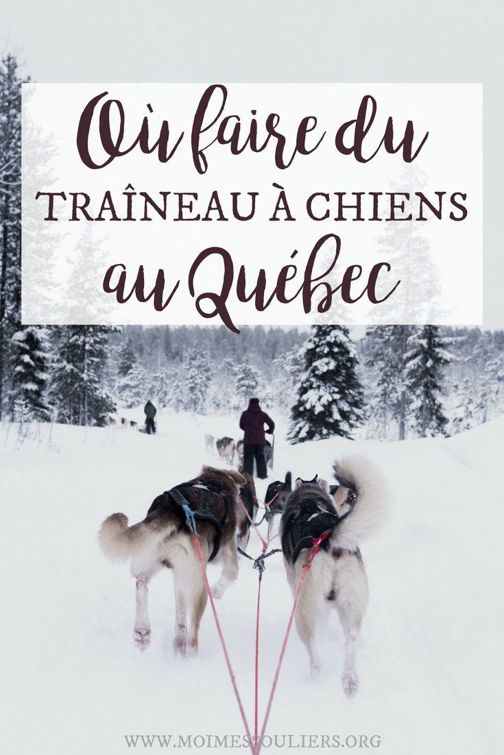 Quel est le meilleur endroit où faire du traineau à chiens au Québec? Sport hivernal par excellence, c'est l'occasion de jouer dehors en compagnie de chiens adorables. #quebecoriginal #mauricie #voyage #voyagevoyage #traineau #hiver #quebec