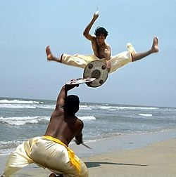 Kalaripayattu an Indian martial art is considered one of the oldest fighting systems in existence