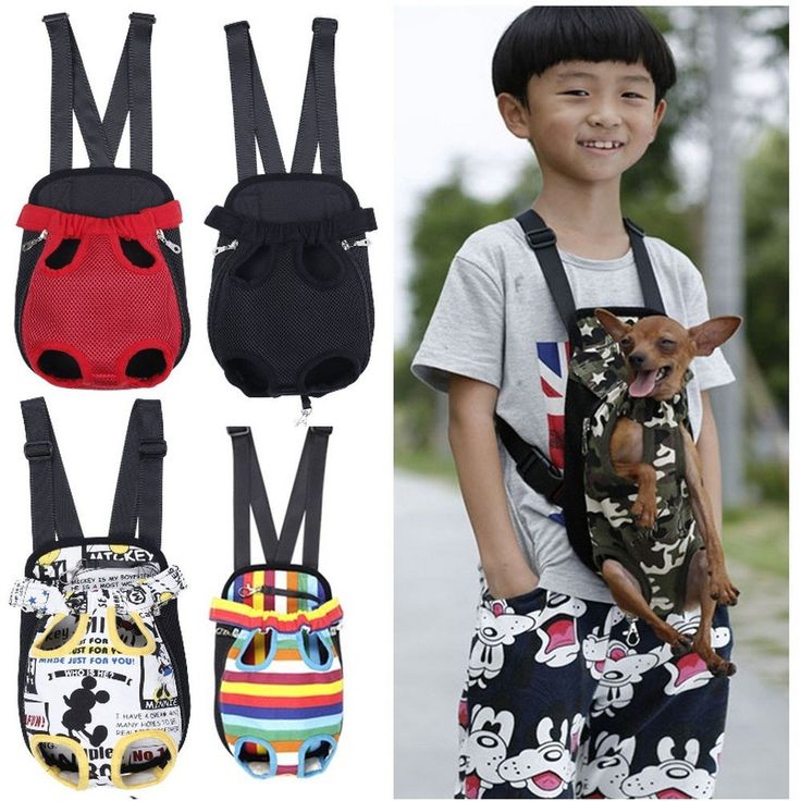 One Of A Kind Pet Carrier Front/Back