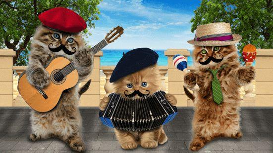Znalezione obrazy dla zapytania śmieszne koty grafika