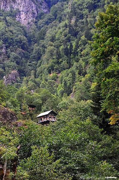 -Sky's neighbor Artvin- TURKEY