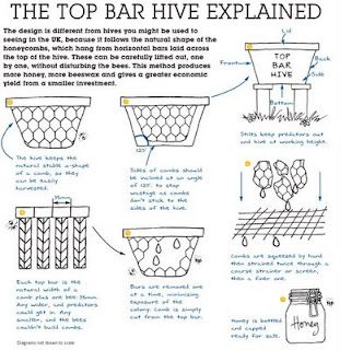 Kenyan Top Bar Bee Hive an easy cheap bee keeping method.... I knew someone who swore this was better than the Langtrath hive.