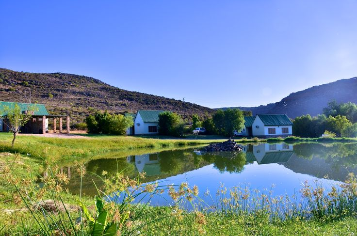 #Rondeberg Holiday Resort, on the banks of the Bulshoek Dam. This picture overlooking the duck pond with Private Camping in the distance. www.rondeberg.com
