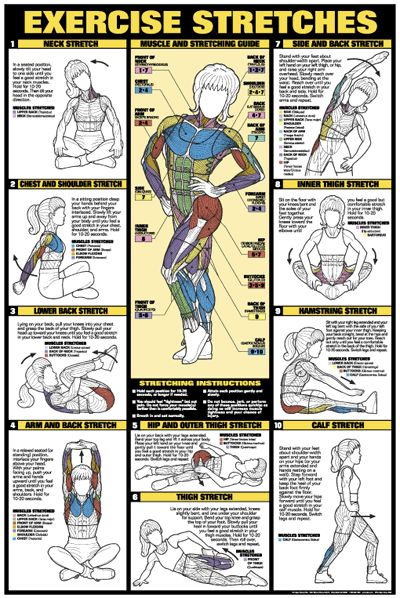 Stretches...I follow these at the gym and have felt so much better since I started doing them