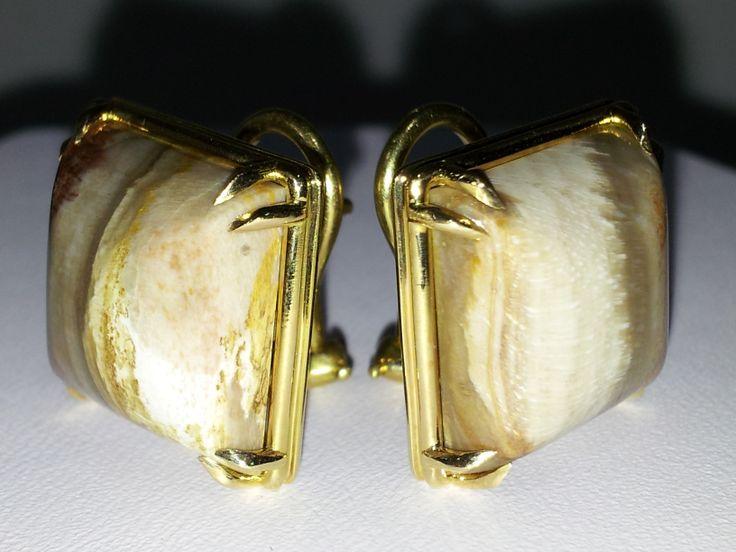 Ramo Earrings  Petrified Wood gemstone  18-K yellow gold high polished Petrified Wood  Eagle claw prongs  Omega ear clips