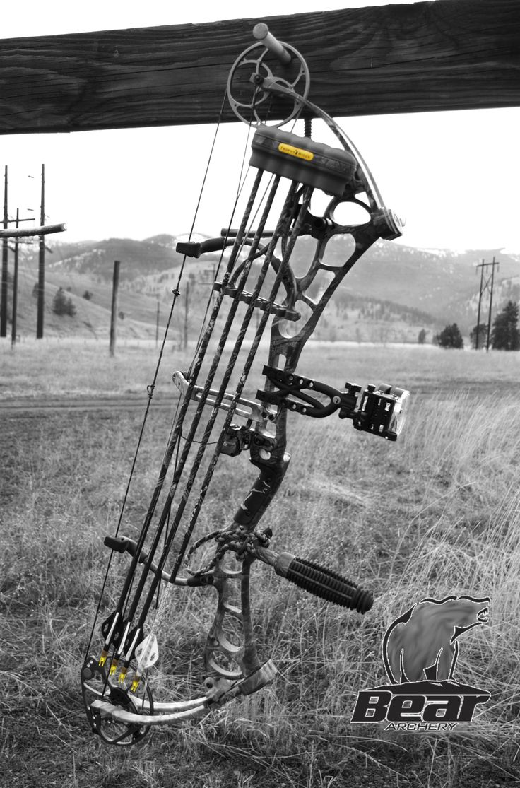 Bear Archery compound bow.