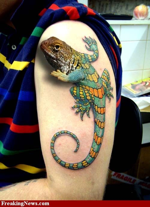 89 best images about frog tattoo on pinterest cute frogs for Tattoos on old skin