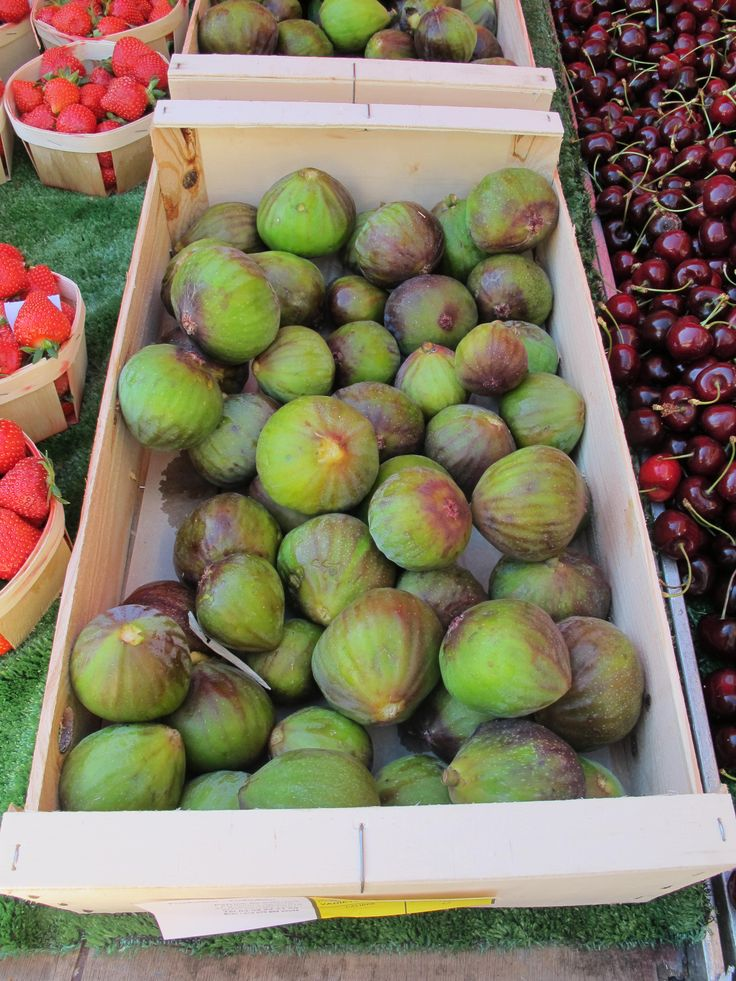Fabulous Figs