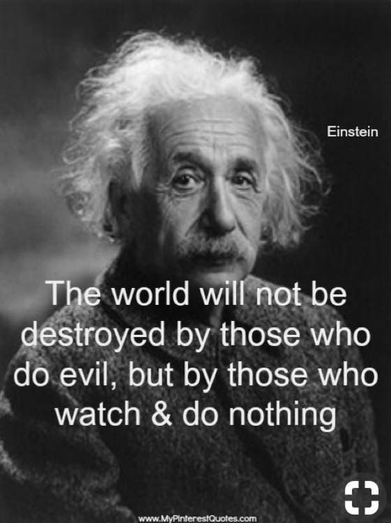 The world will not be destroyed by those who do evil, but by those who watch and do nothing.....