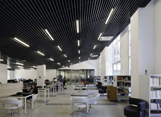 Universidad Andrés Bello Viña del Mar