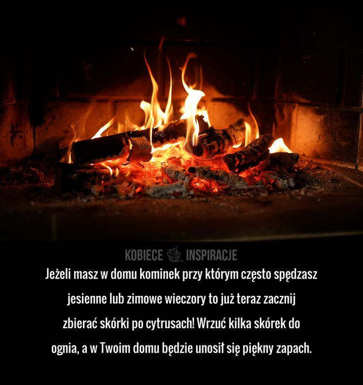 Jeżeli masz w domu kominek przy którym często spędzasz jesienne lub zimowe wieczory to już teraz zacznij zbierać skórki po ...