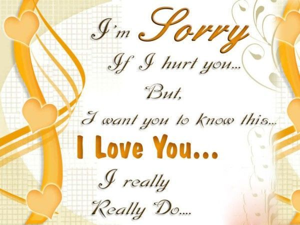 I Am Sorry If I Hurt You But I Love You