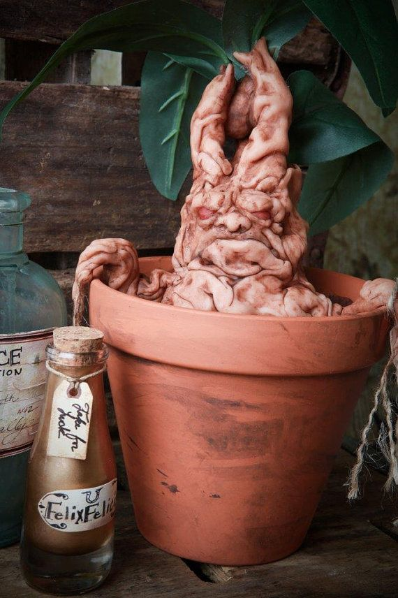 Harry Potter inspired Mandrake Mandragora Handmade OOAK clay sculpture specimen oddities in pot