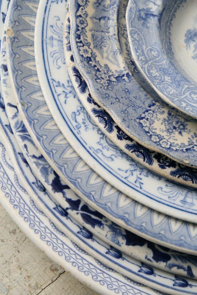 //assiettes bleues