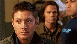 I don't know which is funnier - Jensen cracking up, random, taller than Jared buff dude, or Jared's expression