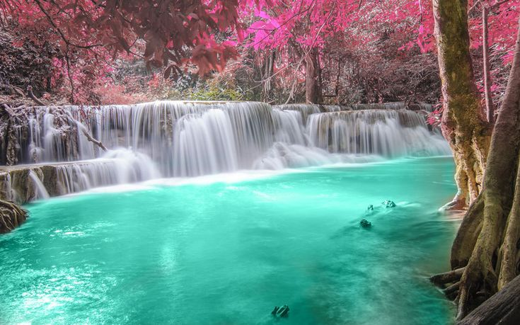 A deep forest waterfall in Kanchanaburi, Thailand (Fotolia/AP)
