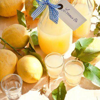 Limoncello maison       6 citrons de Menton de préférence (à défaut, non traités)      50 cl d'alcool à 90° (ou 1 L d'alcool à 40°)     500 g de sucre en poudre      75 cl d'eau minérale, type Evian (ou 50 cl si vous utilisez de l'alcool à 40°)