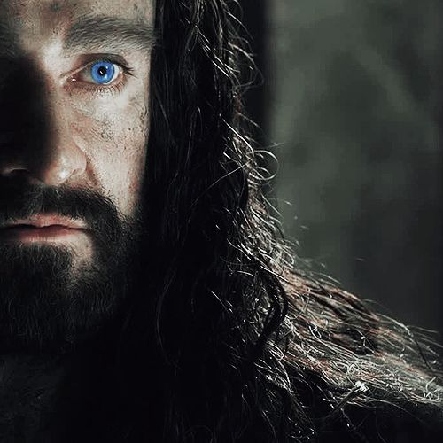 thorin oakenshield character analysis in the Today the world has limited resources such as energy, minerals and clean water people become increasingly selfish and greedy as the resource become scarce.