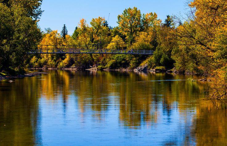 Bridging | by stevenbulman44