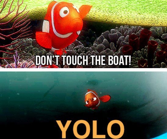 : Yolo, Giggle, Quotes, Funny Stuff, Humor, Things, Disney, Finding Nemo