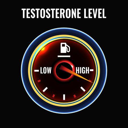 Wanneer mans se testosteroonvlakke verhoog verander hul denkwyses. In plaas van beredeneerde denke, skakel hulle oor na intuïtiewe denke, met oordeelsfoute.