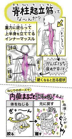 新年度のストレスが溜まり、そろそろ肩や腰にも疲労がずっしりと現れてくる頃……。NHK「あさイチ」でも紹介された「脊柱起立筋ストレッチ」で体幹からほぐしてみませんか?聞き慣れない名前の「脊柱起立筋(せきち...