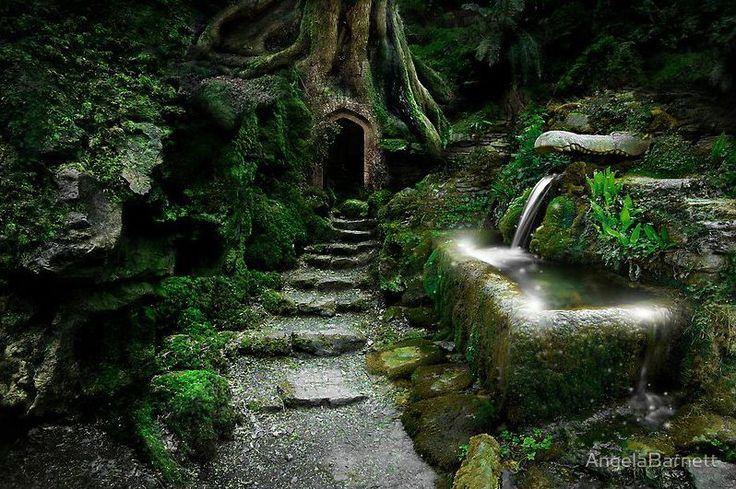 love magical places :)    photo: angela barnett  shared by: arthur crow