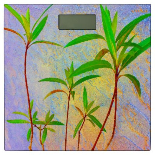 15% off with code ZVALENTINE17 - Tropical Pastel Bathroom Scale from ZoeSPEAK