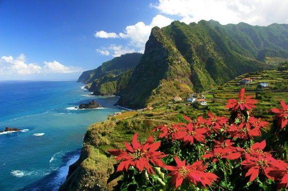 Insel-ABC: Madeira ist für Naturfreunde ein wahres Paradies