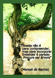 -: Manoel de Barros: 96 anos de poesia