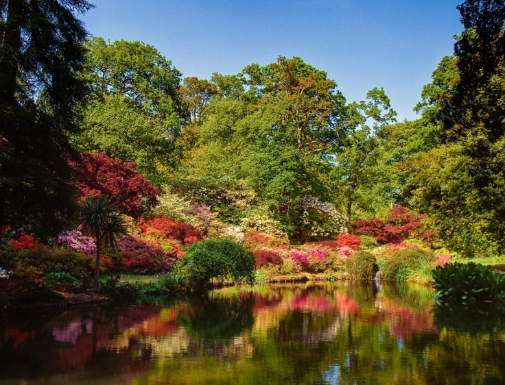 107 best Exbury Gardens images on Pinterest Flowers Beautiful