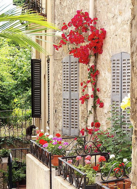 Harmonie Murale - Le Cannet en Provence, France...: