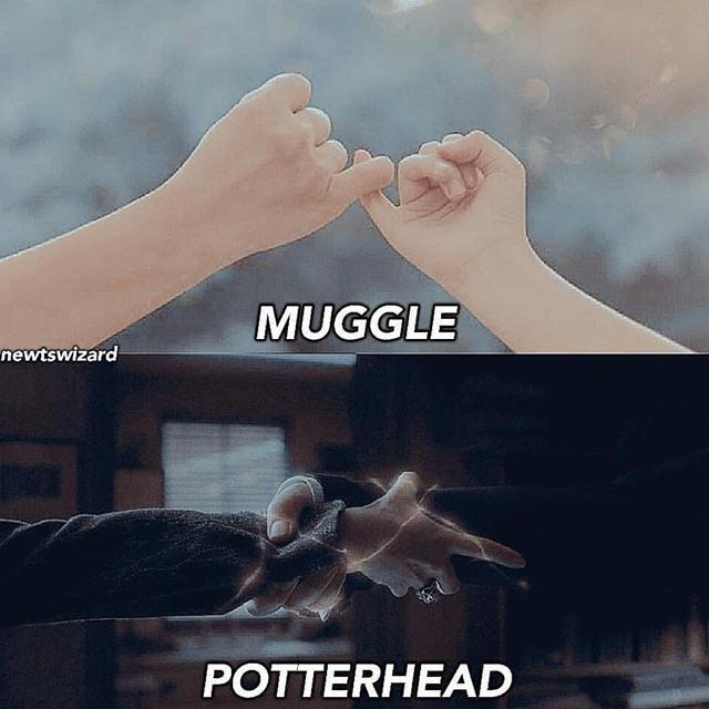Are You A Muggle Or A Wizard Check The Last Digit Of Your Like 0 2 4 6 8 Muggle 1 3 5 7 9 Wiza Harry Potter Jokes Harry Potter Puns Harry Potter Fandom