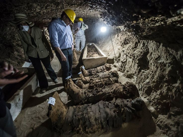 Archaeologists discovered 17 new mummies from ancient Egypt as well as documents, sarcophagi and animals coffins.