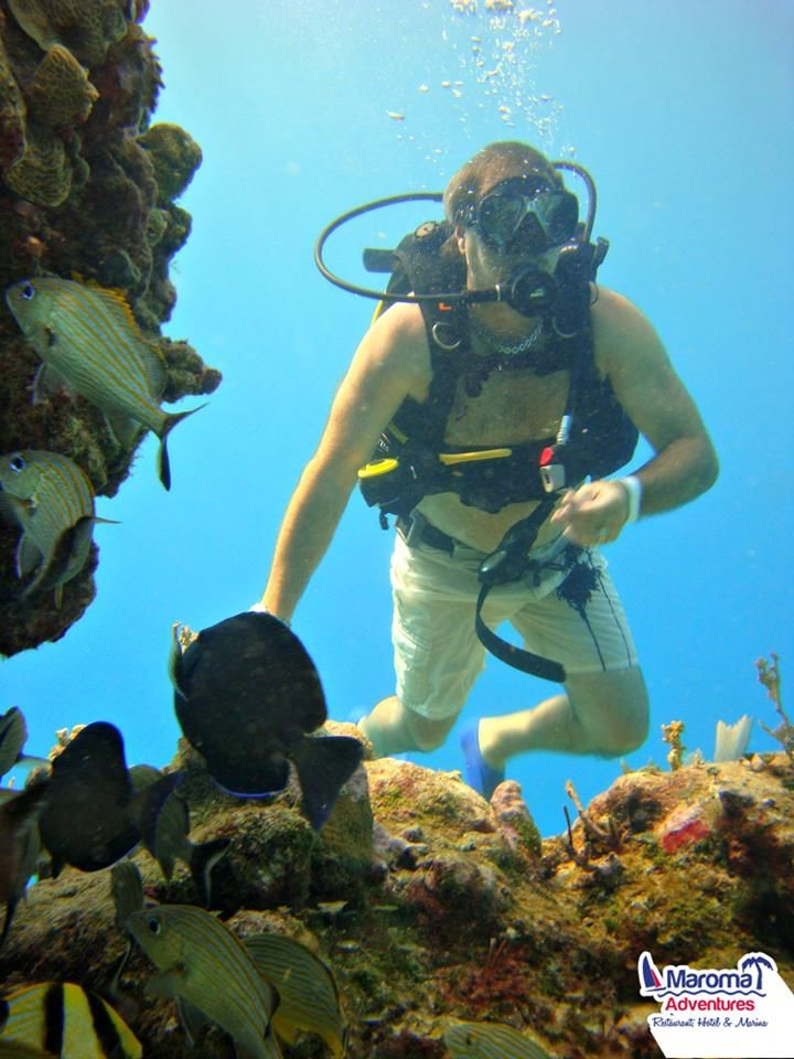 Becoming awed by the Mexican #Caribbean's marvels, a MUST experience during your visit to #paradise goo.gl/FTVzUJ