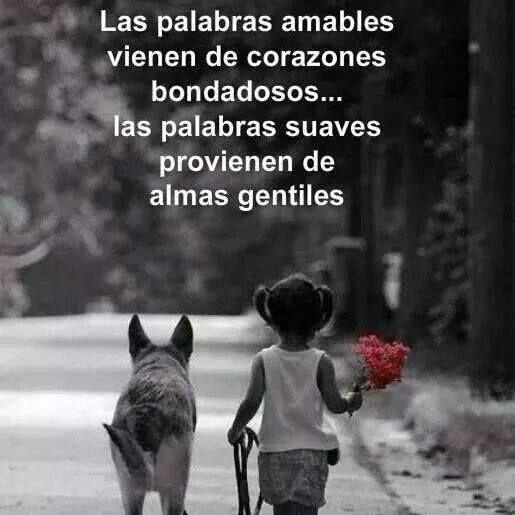 Las palabras amables vienen de corazones bondadosos. Las palabras suaves provienen de almas gentiles