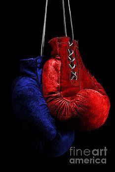 boxing gloves, red, blue, colors, flag, sport, boks, boksig, box, ring, fight, still life, isolated, studio, black, boxer, fighter, honor, photography, art, decoration, wall decor, decor, products, design, photo